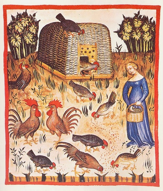 Medieval orgy with chicken