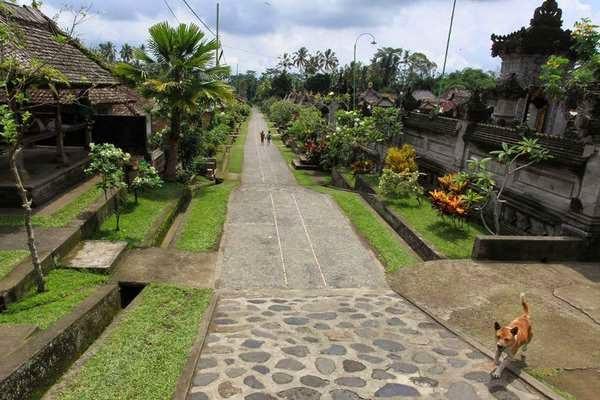 5 Desa Unik Hanya Ada Di Indonesia