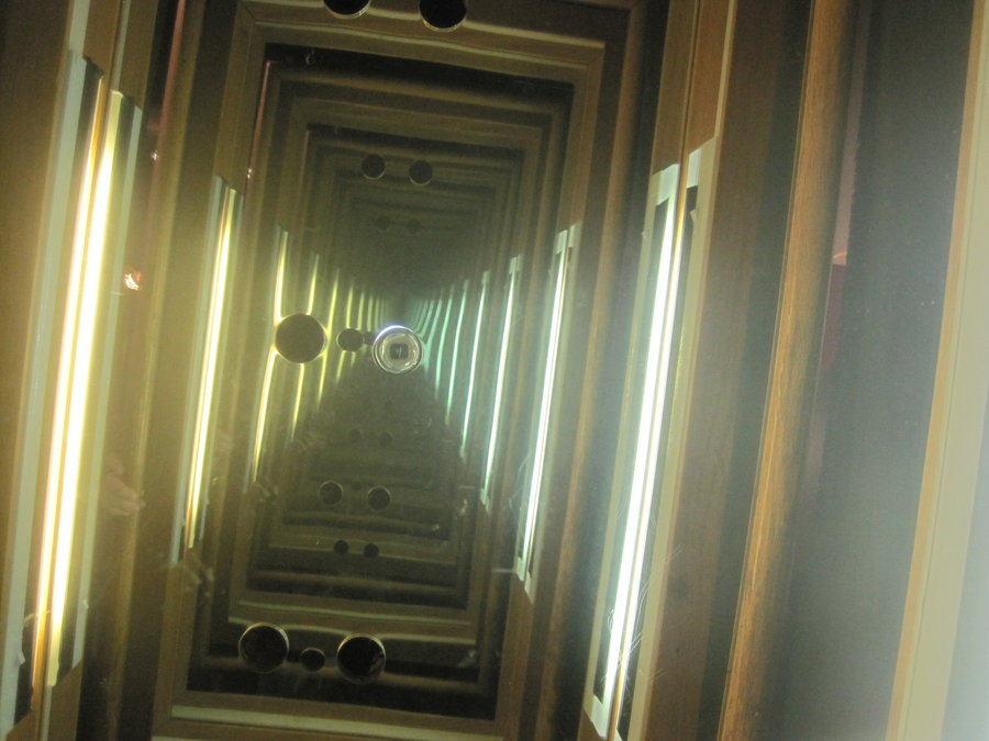 the mirrors reflection essay This resource paper is intended to provide information on the use of mirrors in   for thousands of years people have gazed into mirrors' reflecting surfaces to ask.