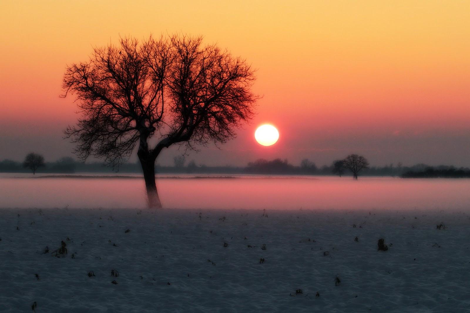 Ambre coucher du soleil pornstar