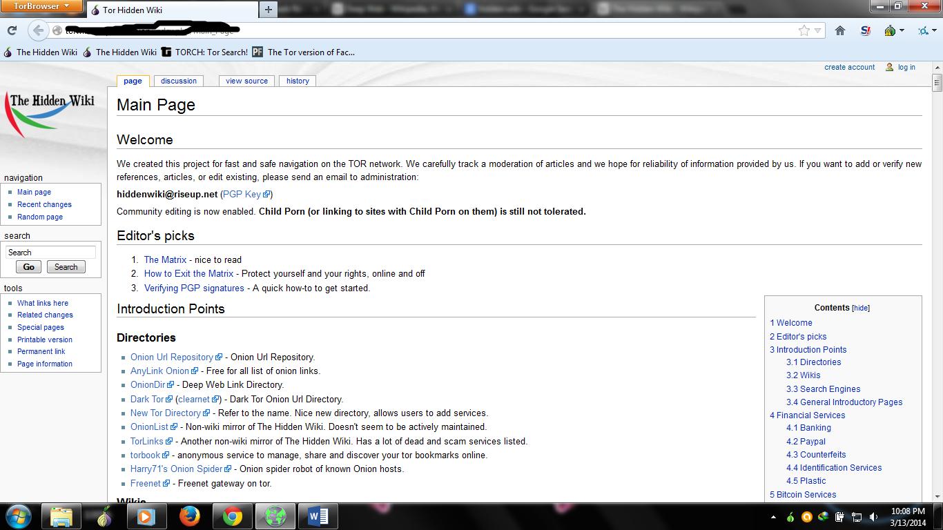 Wiki term paper