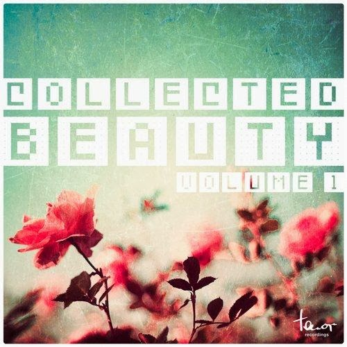 Collected Beauty, Vol. 1 – 2014