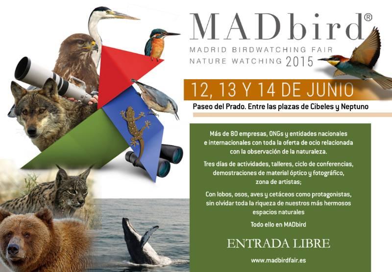 MADbird Fair 2015