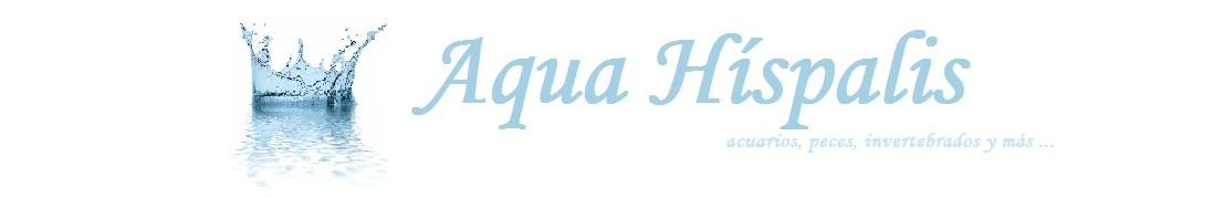 Aqua Híspalis