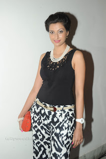 Hamsa Nandini pos at attarintiki daredi audio 028.jpg
