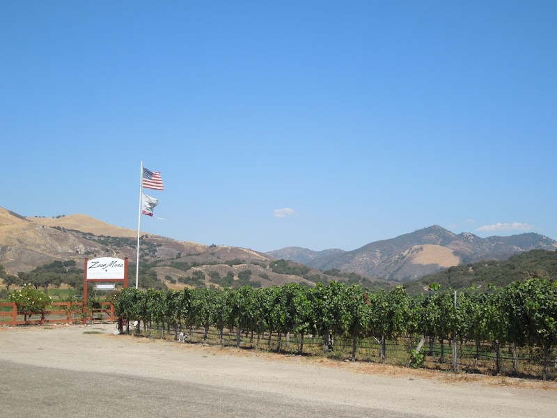 Zaca Mesa Winery Foxen Canyon Road