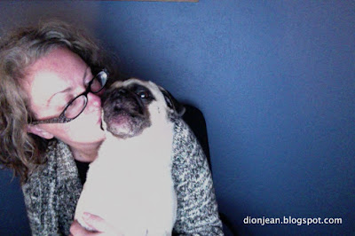 Pug hug turns into pug torture