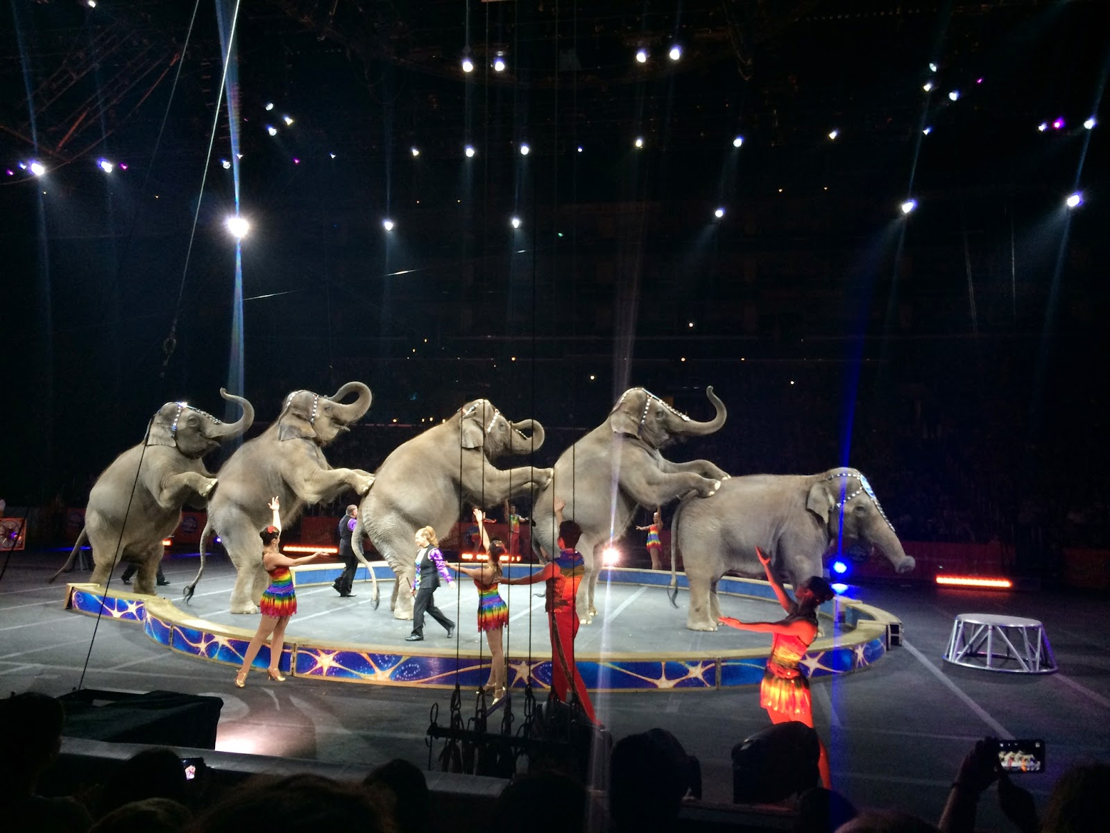 Alexander+Lacey Ringling Bros and Barnum & Bailey Presents Legends Review - Circus Shows