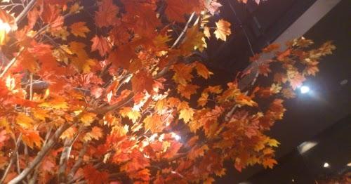 Yummilicious at Seoul Yummy (Suntec City) - Travel Bytez