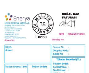 enerya-gaznet