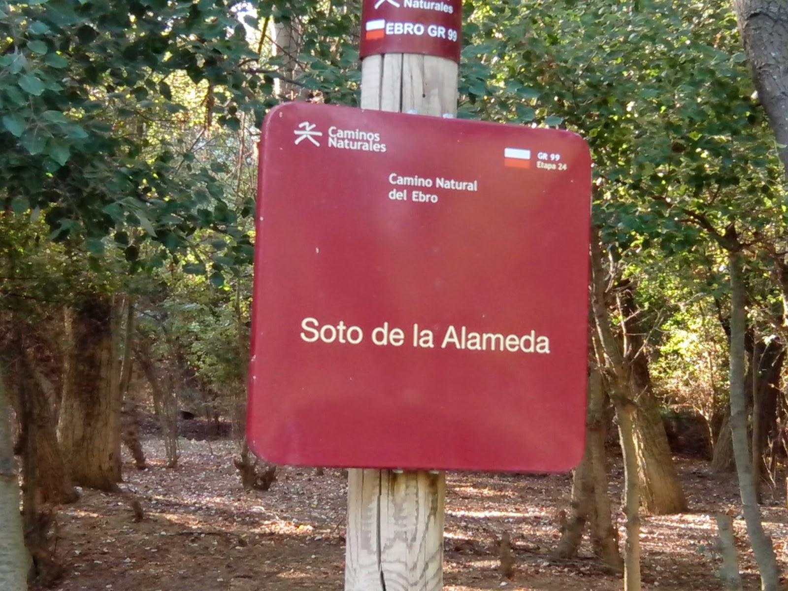 Soto de la Alameda