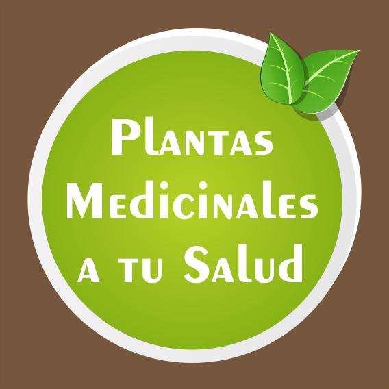 Plantas A tu Salud