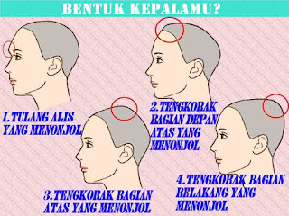 Bentuk kepala manusia, dahi, tengkorak, tulang, menonjol