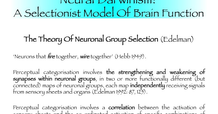 neural darwinism Evolution from recapitulation theory to neural darwinism january 29, 2017 jms pearce london, united kingdom early evolutionary theorists noted that the evolution of the brain, its structural organization, and microscopic structure appeared to develop concurrently with human anatomy through the process of evolution.