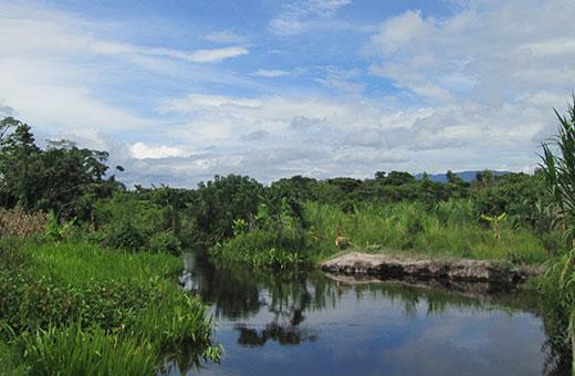 En la comunidad nativa Sector Río Soritor