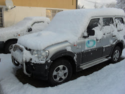 GKWS car in snow