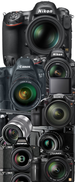 Best digital camera 2013