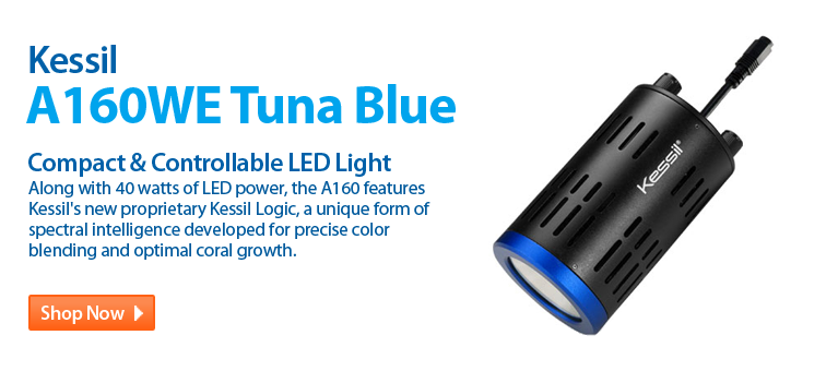 http://www.readysetreef.com/kessil-a160we-led-light-tuna-blue