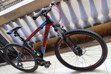 Element XC600