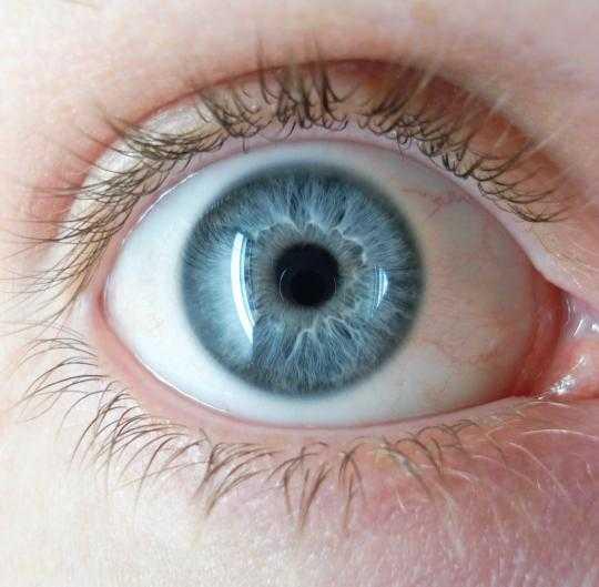 Warna Mata Biru