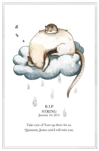 Dead pet, rat, heaven, hamster, RIP, death