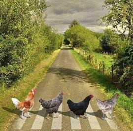 Abbey Road, Ukrainian Style