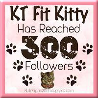 KT Fit Kitty Is Celebrating 300 Followers