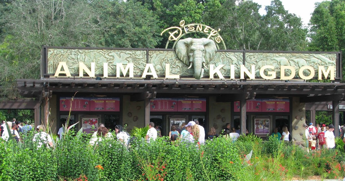 the disney 39 s animal kingdom one day must see guide