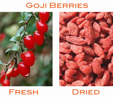 Top 10 Health Benefits of Goji Berries