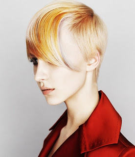 Elegant Punk Hairstyles Color, Punk Hairstyles Color, Color Hairstyles Color, Punk Hairstyles
