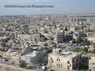 Aleppo%2Bfrom%2Bcitidel%2B2.jpg