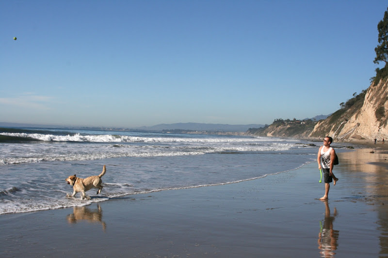 Hendry's Dog-friendly Beach Santa Barbara