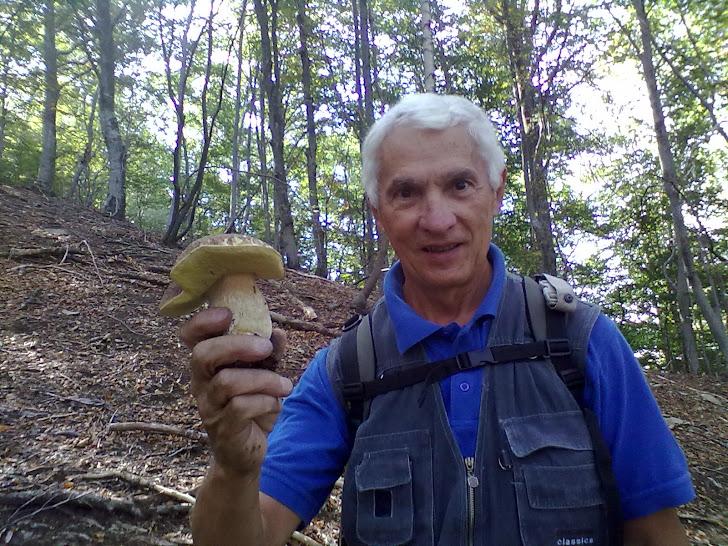 Funghi di manenti E. del 2011