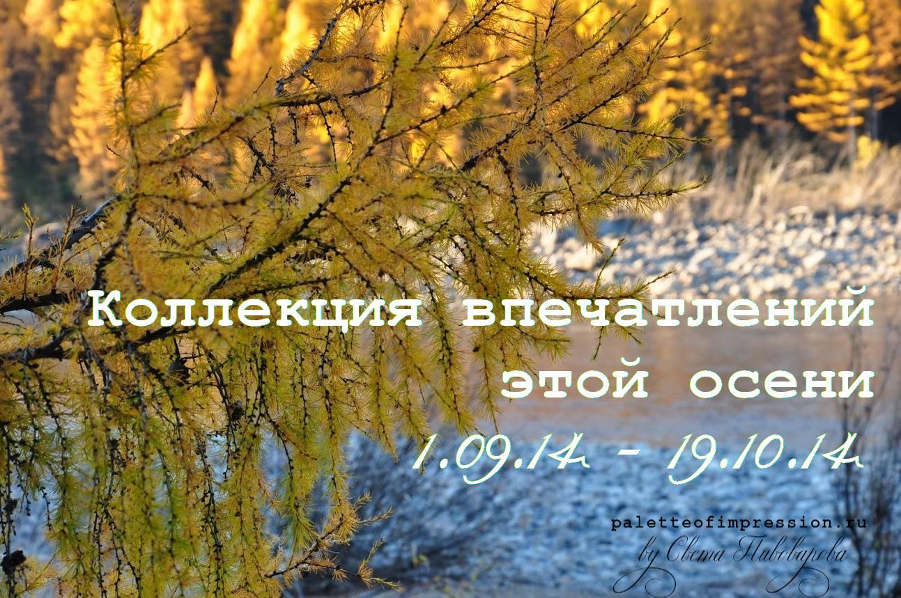 Коллекция впечатлений этой осени. Блог Вся палитра впечатлений