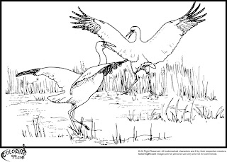 dancing stork coloring pages