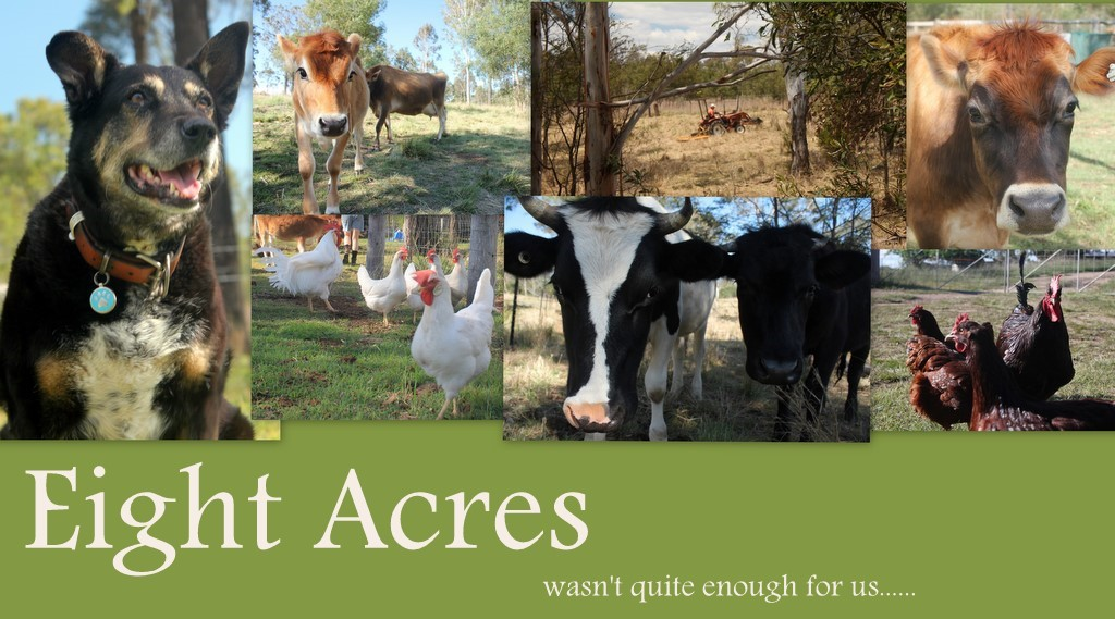 Eight Acres