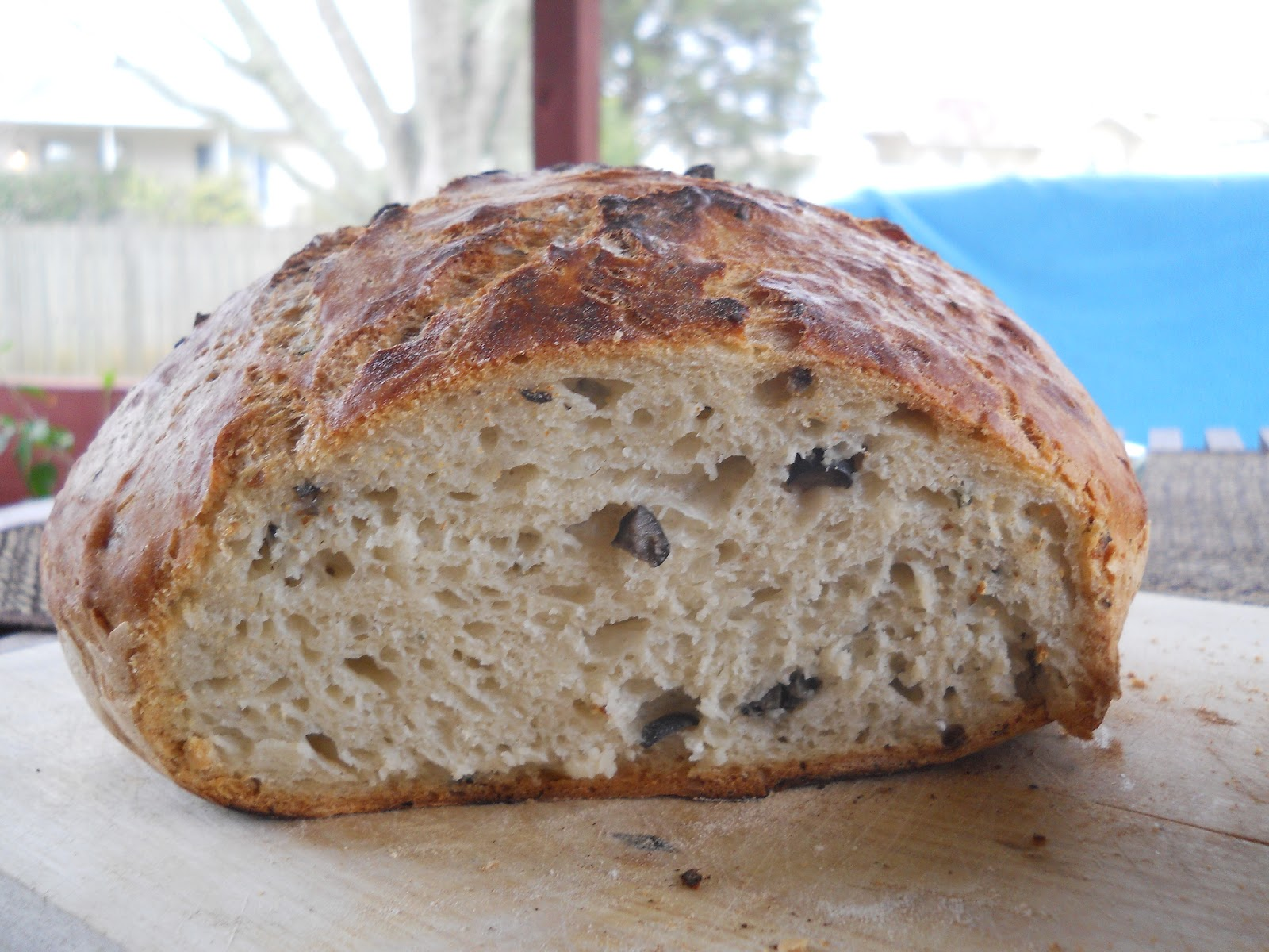 Trend Hopping: Crusty Mediterranean black olive rosemary bread