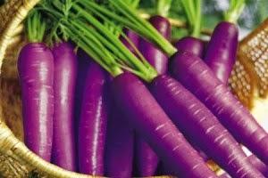 Purple Carrot Ramuan Semulajadi Vivix Shaklee