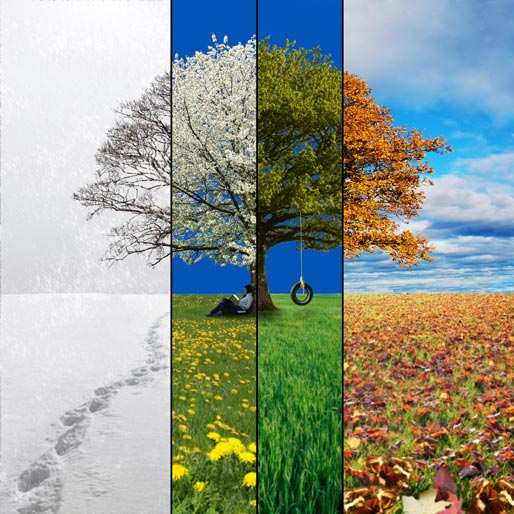 four seasons of life poem - gvsparx