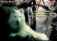 Sexto Sentido Animal