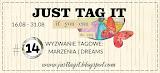 Wyzwanie #14 - Marzenia    Tag challenge #14 - Dreams