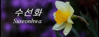 Suseonhwa koreaiul azt jelenti, nárcisz.