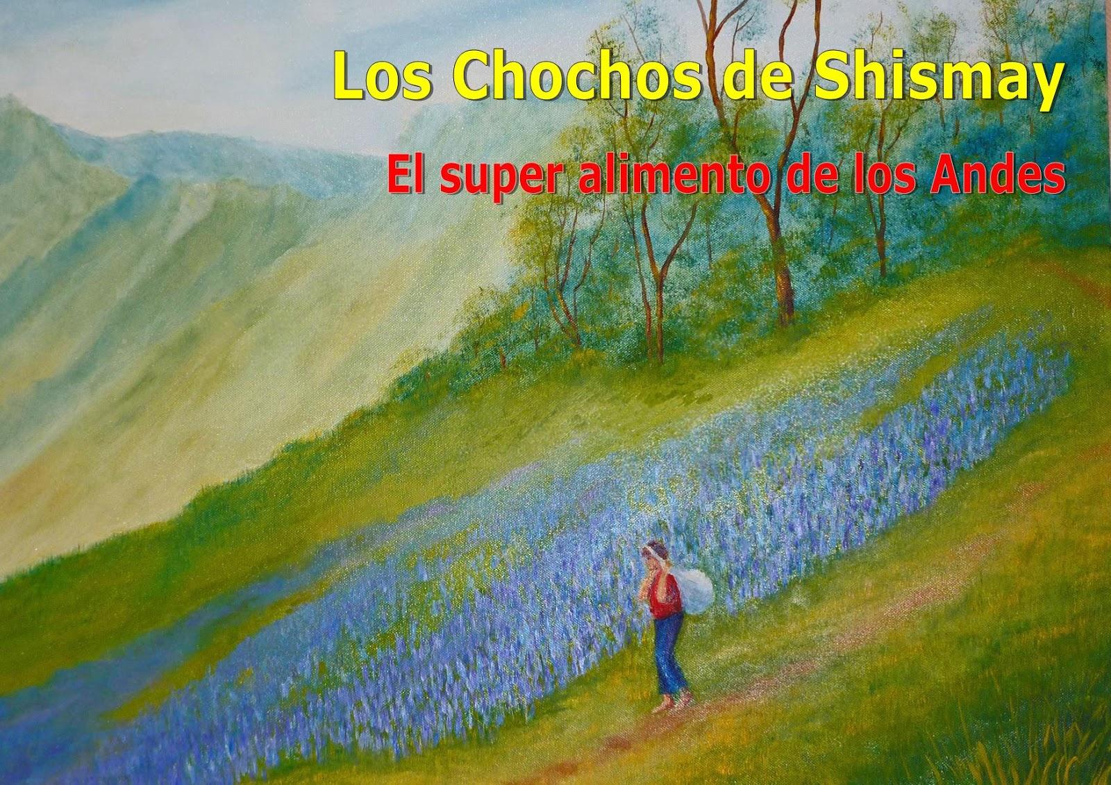Los Chochos de Shismay (Lupinus mutabilis Sweet) El súper alimento de ...