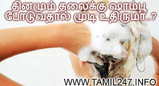 use shampoo daily is good for hair, apply shampoo hair fall, hair loss dounts in tamil, skin doctor specialist advice about using shampoo