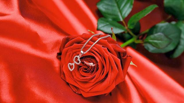 Rosa Roja y Anillo para San Valentín
