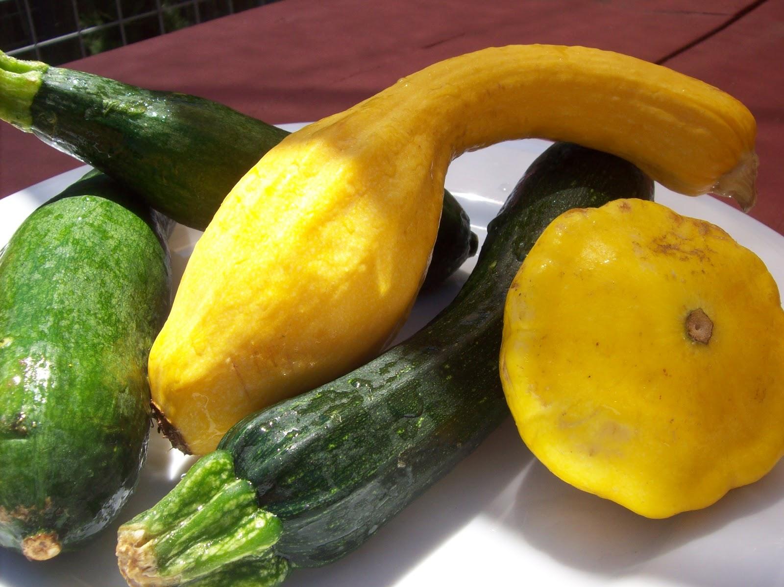 Napa Farmhouse 1885 A Recipe For Healthy Summer Squash