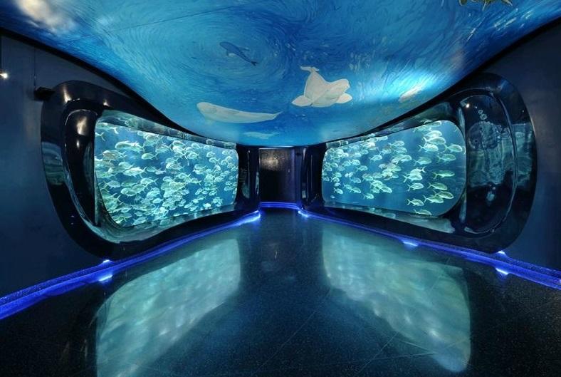 Exceptionnel MydeaMedia: Georgia Aquarium - The Largest Aquarium in the World ! NO43