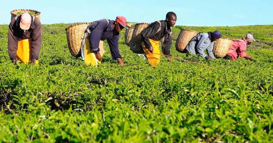 Купить готовый бизнес в кении