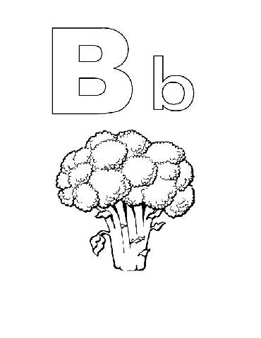 preschool coloring pages alphabet alphabook b