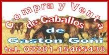 GASTON GOÑI